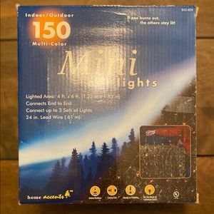 Home Accents Xmas Set of Mini Net Lights 4x6 VGC